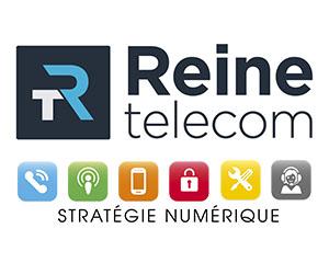 reine-telecom-perigny-17
